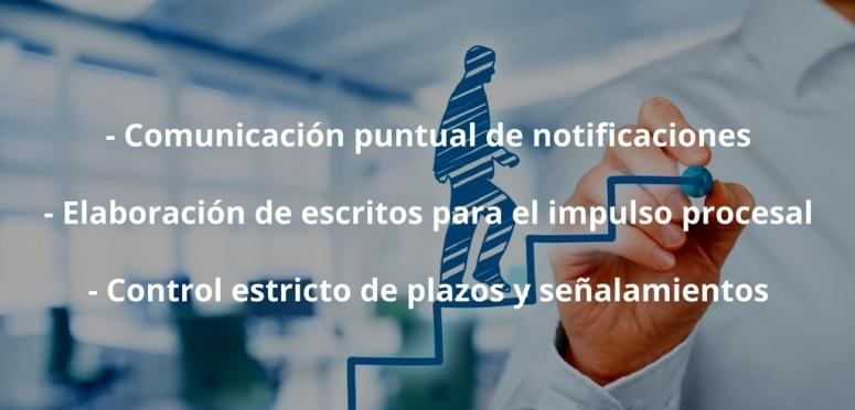 Comunicación puntual de notificacionesElaboración de escritos para el impulso procesalControl estricto de plazos y señalamientos